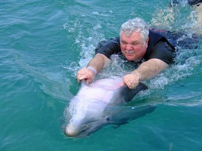 Delphin-Mensch-Beziehung