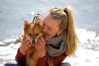Hund-Mensch-Beziehung